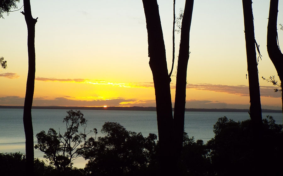 Scribbly Gum Fraser Island House